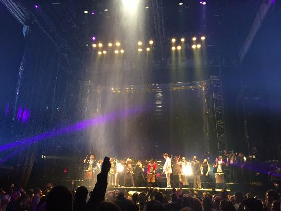 Daryl Roth Theatre: Plateia assisitindo Fuerza Bruta