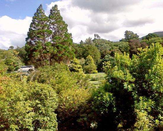 Giardino roccioso picture of muckross house gardens for Giardino roccioso