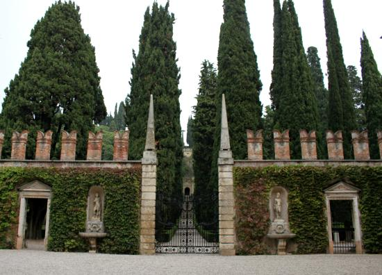 Un dettaglio foto di palazzo giardino giusti verona for B b giardino giusti verona