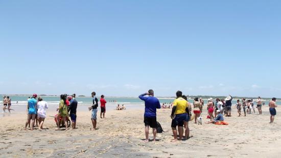Ilha Grande, PI: Praia do Pontal.