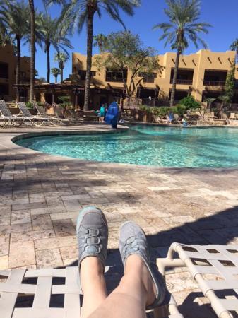 Litchfield Park, AZ: Oasis Pool