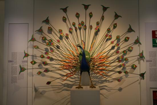 Museo de Arte Popular: Un pavo real