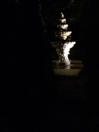 Springfield, KY: Night view of the fountain in front of the home