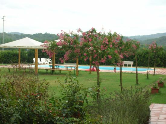 Fattoria Isola: Piscina e gazebo