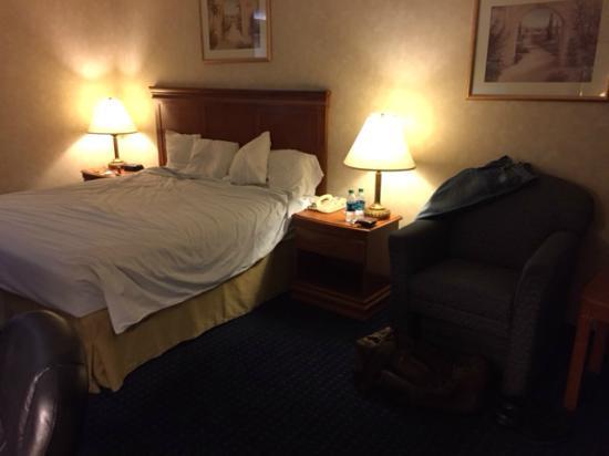 Quality Inn Phoenix North I-17: Room standard King size