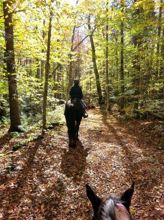 Chittenden, VT: On a trail ride