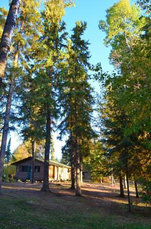 Perrault Falls, Canadá: Beaver Hut - sleeps 4