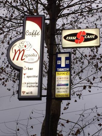 Bar Magnolia
