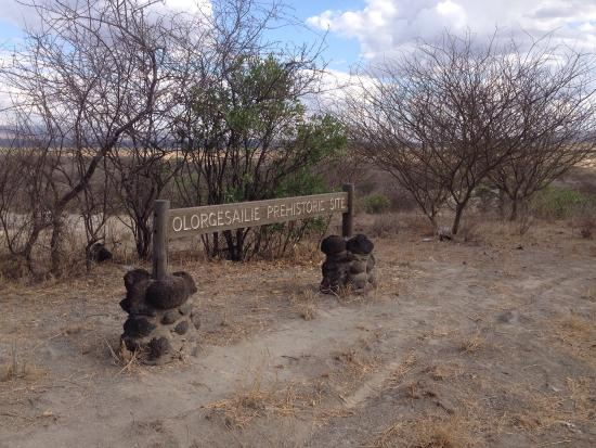Provincia del valle del Rift, Kenia: Olorgesailie site