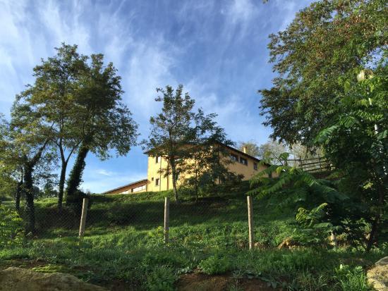 Residence Terre Gialle: photo1.jpg