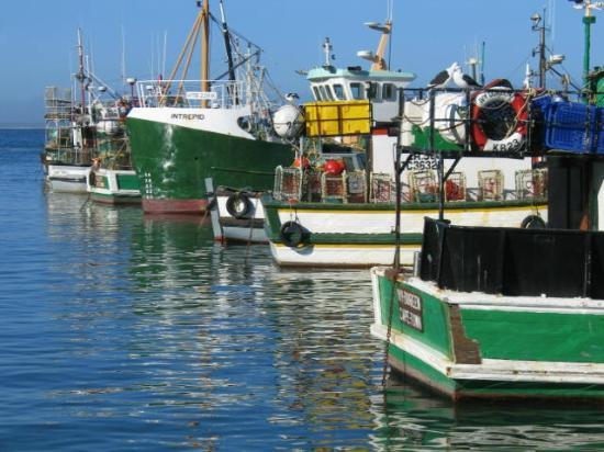 St. James, Sudáfrica: Simons Town Harbour