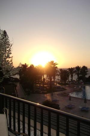 Venus Beach Hotel: hotle reception