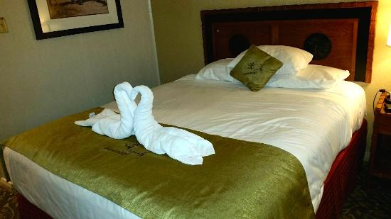 Jackson Lake Lodge: Our custodian made this cool swan on our bed in the evening