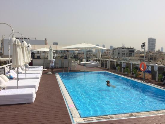 piscina sul terrazzo - Picture of Leonardo Art Tel Aviv, Tel Aviv ...