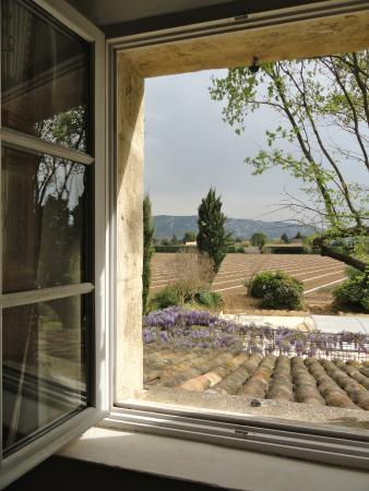 Лань, Франция: The view
