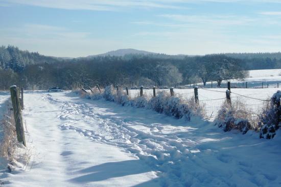 Lind, Германия: Verschneite Landschaft um die Pension