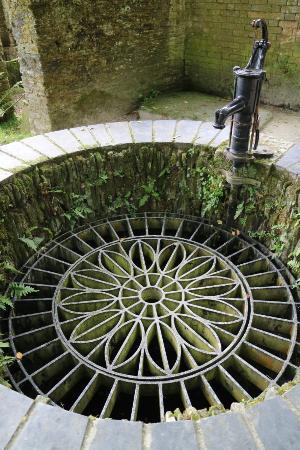 Сент-Остелл, UK: The Lost Gardens of Heligan