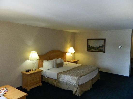 Days Inn by Wyndham Durango : Single King Room