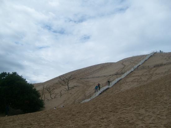 Dune picture of dune du pilat la teste de buch tripadvisor - Hotel dune du pilat ...