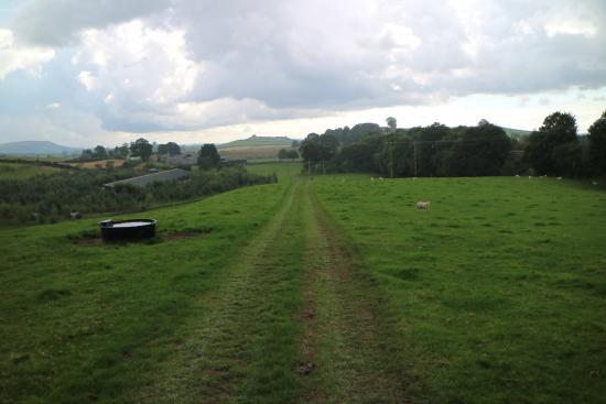 Kendal, UK: Lakeland Maze Farm Park