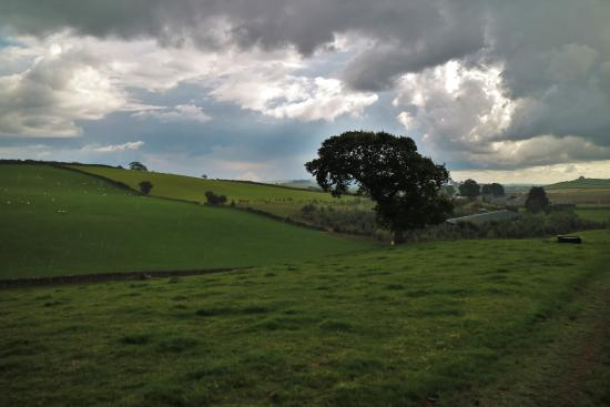 Kendal, UK: view from the tractor ride