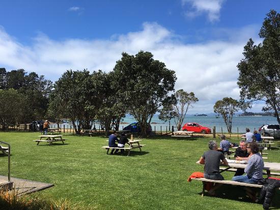 Pulau Waiheke, Selandia Baru: photo4.jpg