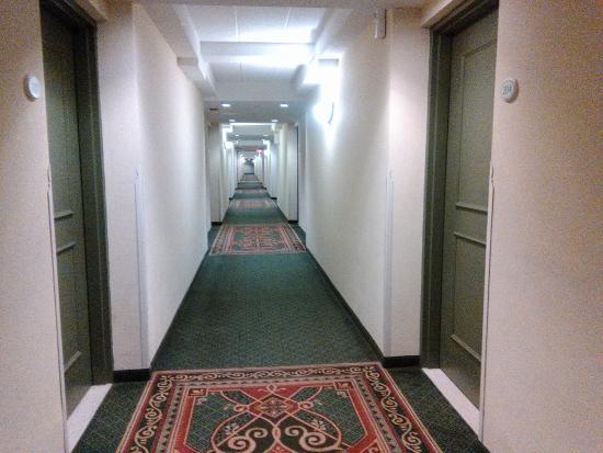 Hotel Carlingview Toronto Airport: Corridor