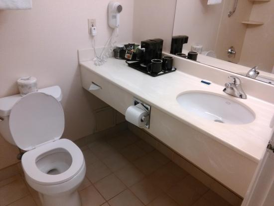 Hotel Carlingview Toronto Airport : Dated but reasonably clean bathroom
