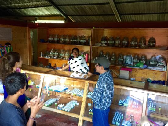 Mayan Medicine Museum: photo2.jpg