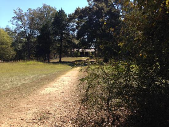 Natchez, MS: Pathway leading to house