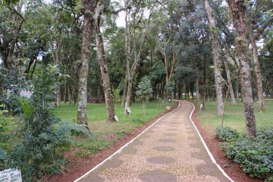 Parque Palmital