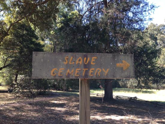 Natchez, MS: Slaves Cemetery (no markers!)