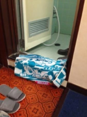 Hotel Tachibana: 浴室、トイレ