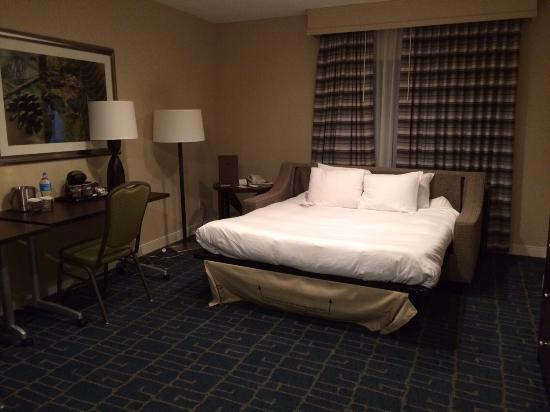 Only a sofa bed picture of doubletree suites by hilton - Hilton garden inn charlotte southpark ...
