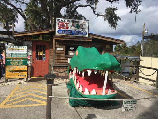 show user reviews black hammock restaurant oviedo florida