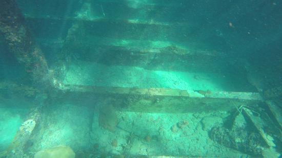 Bimini: Under Sapona