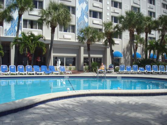 The adult swimming pool heated picture of tradewinds for Swimming pool trade show florida