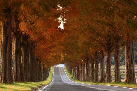 秋の着回しおすすめアイテム・コーディネート