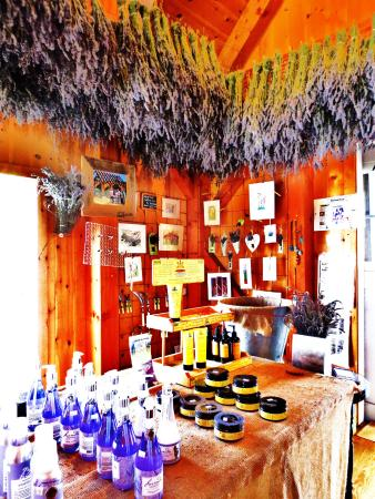 East Marion, NY: Lavender by the Bay Store