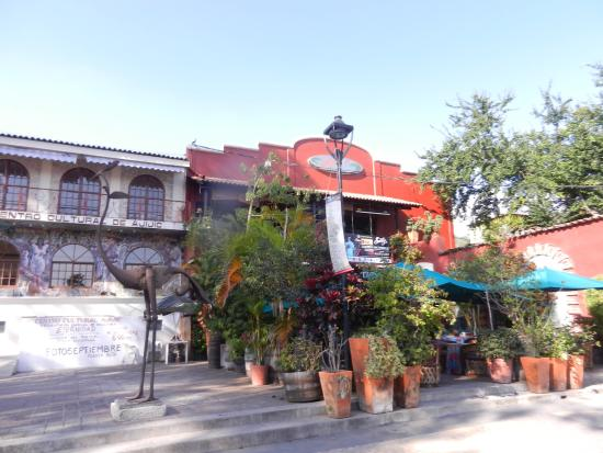 The inviting entery to jardin plaza restaurant large for Jardin plaza