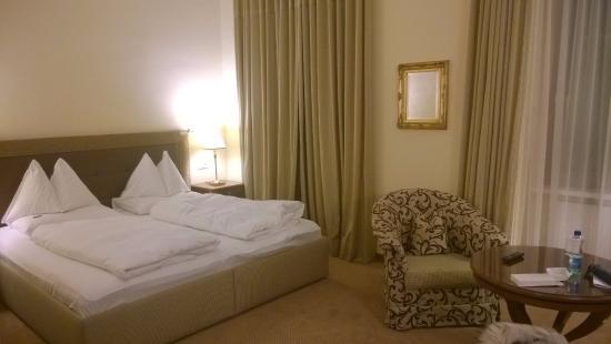 Parkhotel Graz: Room 113