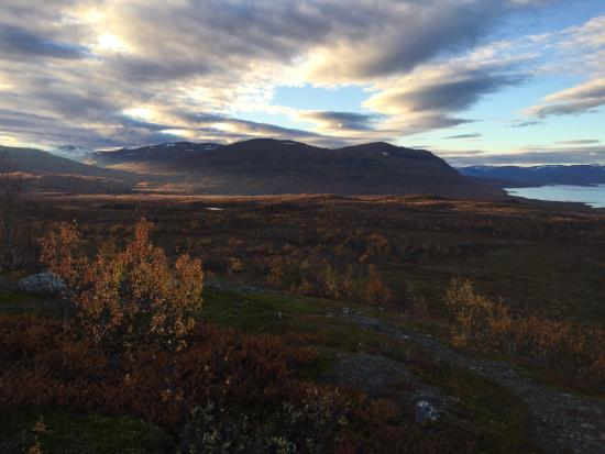Abisko Guide - Day Tours