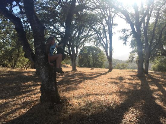 Ukiah, CA: We were the only ones on the trail (or so it seemed). Ahh.