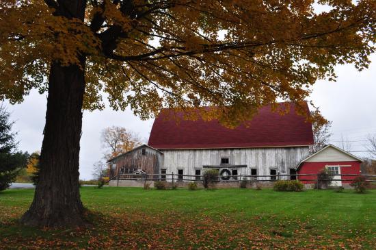 Margaretville Mountain Inn : adjacent barn building