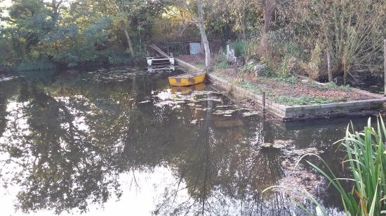 Hamgreen Fishing Club