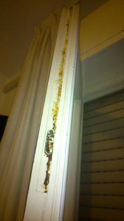 copri water rotto - Picture of Hotel La Terrazza, Lido Di Camaiore ...