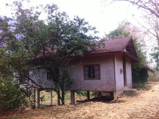 Vang Vieng Organic Farm: Habitaciones privadas