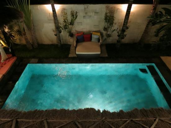 The Zala Villa Bali: Large indoor pool