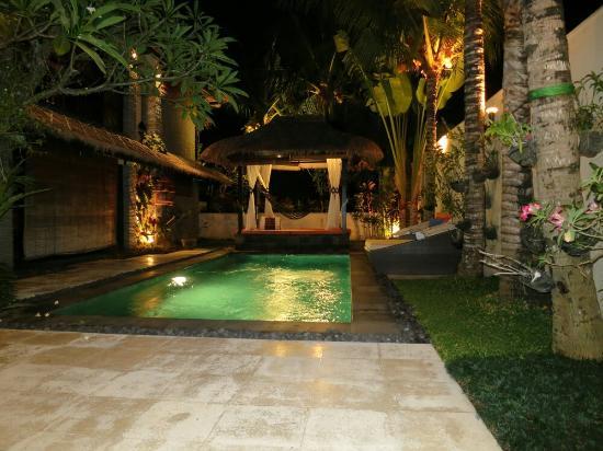 The Zala Villa Bali: Pool view