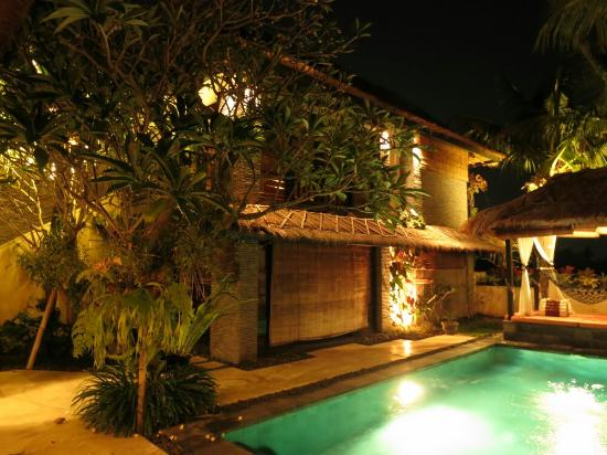 The Zala Villa Bali: Pool and room view